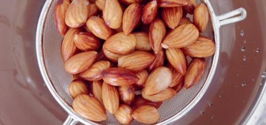 นมอัลมอนด์โฮมเมด (Almond Milk)